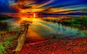 sunset sunset beautiful colorful shore sky amazing river