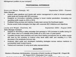 it manager resume example sample of manager resume lexgstein