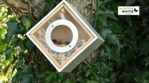 fabrication mangeoire oiseaux oiseaux du jardin mangeoire design pour oiseaux jardinerie