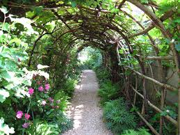 the world u0027s most recently posted photos of arbour and trellis