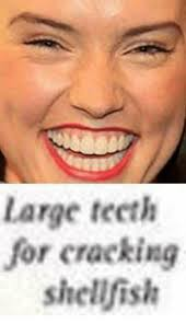 Big Teeth Meme - large teeth for cracking shellfish dank meme on me me