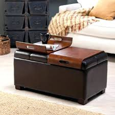 Bed Ottoman Bench Bench Ottoman Ikea Storage Ottoman With Tray Storage Ottoman Ikea