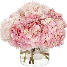 pink hydrangea more hydrangeas hydrangea flowers and pink hydrangea bouquet