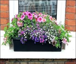 windowsill planter amusing window sill flower box best of interior
