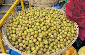 taste of nepal lapsi nepalese hog plum