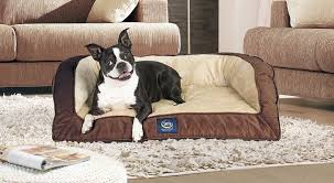 Dog Settee Sofa 10 Best Dog Sofas And Chairs In 2017