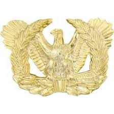 warrant officer eagle rising branch insignia