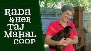 Backyard Chicken Coops Brisbane by Rada And Her Taj Mahal Chicken Coop Youtube
