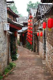 21 best chong what images on pinterest chongqing animals and asia