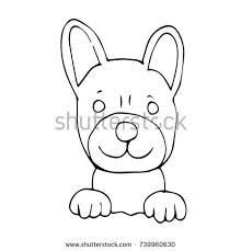 cute sketch draw koala cartoon stock vector 650476504 shutterstock