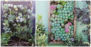wonderful vertical garden ideas diy cozy home