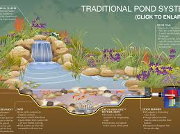 garden pond design ideas interior design