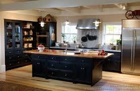 Kitchens With Black Cabinets Pictures Impressive Black Kitchen Cabinets Fantastic Modern Interior Ideas
