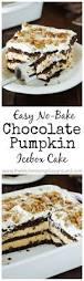 best 25 quick chocolate cake ideas on pinterest quick chocolate