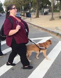 How Does A Guide Dog Help A Blind Person Aira A New And Exciting Access Service For People Who Are Blind