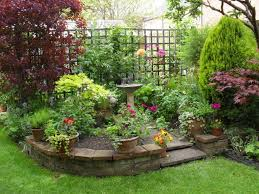 fabulous potted plants with raised flower bed for small garden