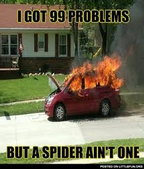 Meme Spider - littlefun burning car i got 99 problems but a spider ain t one