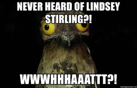 Crazy Bird Meme - never heard of lindsey stirling wwwhhhaaattt crazy eyes bird