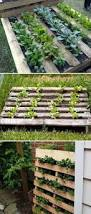 Diy Vertical Pallet Garden - diy show off pallet herb gardens herbs garden and pallets