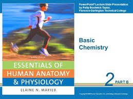 Anatomy And Physiology Chemistry Quiz Chapter 2 Basic Chemistry Ppt Video Online Download