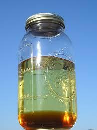 let u0027s make biodiesel taboodata com