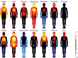 mapping emotions on the body love makes us warm all over shots