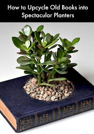 Upcycle Old Books - how to upcycle old books into spectacular planters upcycle