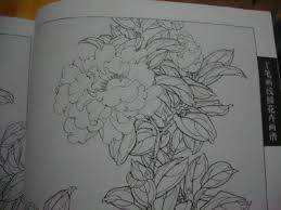 camellia flower chinese painting tattoo sketch flash reference