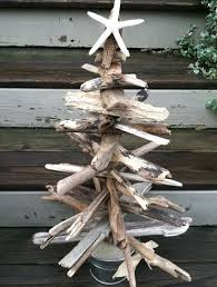 top 25 driftwood trees completely coastal