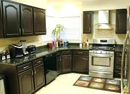 kitchen cabinet pictures ideas painted kitchen cabinets ideas colors wonderful painted kitchen