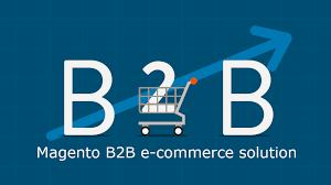 Magento B2b E Commerce Platform B2c E Commerce Magento B2b E Commerce A Driving For Best B2b E