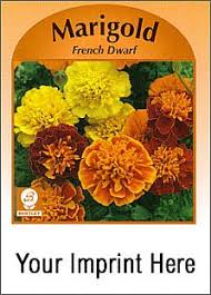 seed packets marigold seed packet stock design custom printed marigold seed