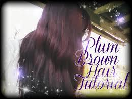 brown plum hair color how i got my plum brown hair youtube