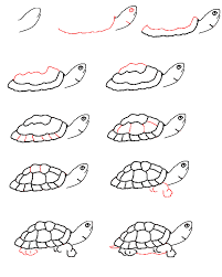 image detail for learn to draw a turtle step by step back to
