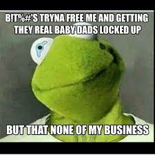 Kermit The Frog Meme - hilarious kermit the frog memes take over the web