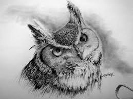 how to draw an owl u2013 rw wilde leadership blog