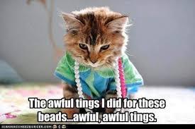 Tuesday Meme - marid gras fat tuesday memes 6 beatnikhiway words of wisdom