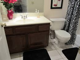 pretty bathroom ideas surprising small bathroom remodel on a budget painting a curtain