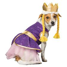 small dog witch costume buy dog costumes online pet costumes shechosethedog