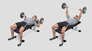 What Do Bench Presses Work Out Ectomorphs How To Gain Muscle Virtuagym Blog