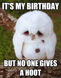 Owl Birthday Meme - it s my birthday but no one gives a hoot depressed owl quickmeme