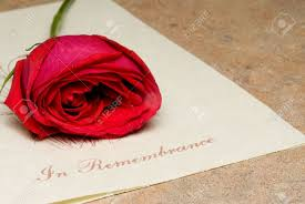 Funeral Bulletin A Funeral Bulletin With A Single Red Rose Stock Photo Picture