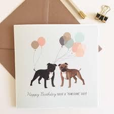 staffordshire bull terrier happy birthday card sirocco design