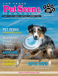 australian shepherd las vegas las vegas pet scene magazine u2013 march april 2017 by homes