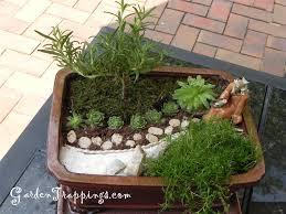 Mini Rock Garden Designing A Japanese Garden Miniature Rock Garden Design In