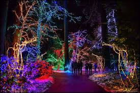 oregon zoo lights 2017 a guide to the best holiday events in portland oregon