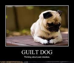 Sad Pug Meme - guilt dog very demotivational demotivational posters very