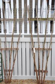Vine Trellis Ideas Not Hard To Figure Out How To Make This Use With The Clematis On