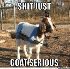 Bad Ass Memes - badass goat by gurkish meme center