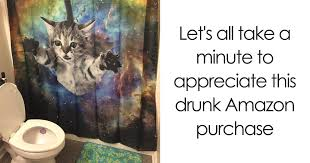 Drunk Cat Meme - 10 times people shopped online while drunk and regretted it